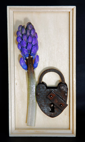 Hyacinth Flower with an Old  Lock in a Wooden Box