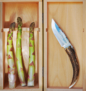 Three Asparagus inside a wooden box with a pocket knife