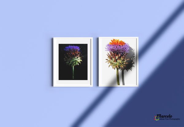 Artichoke Flower Blooming Blue