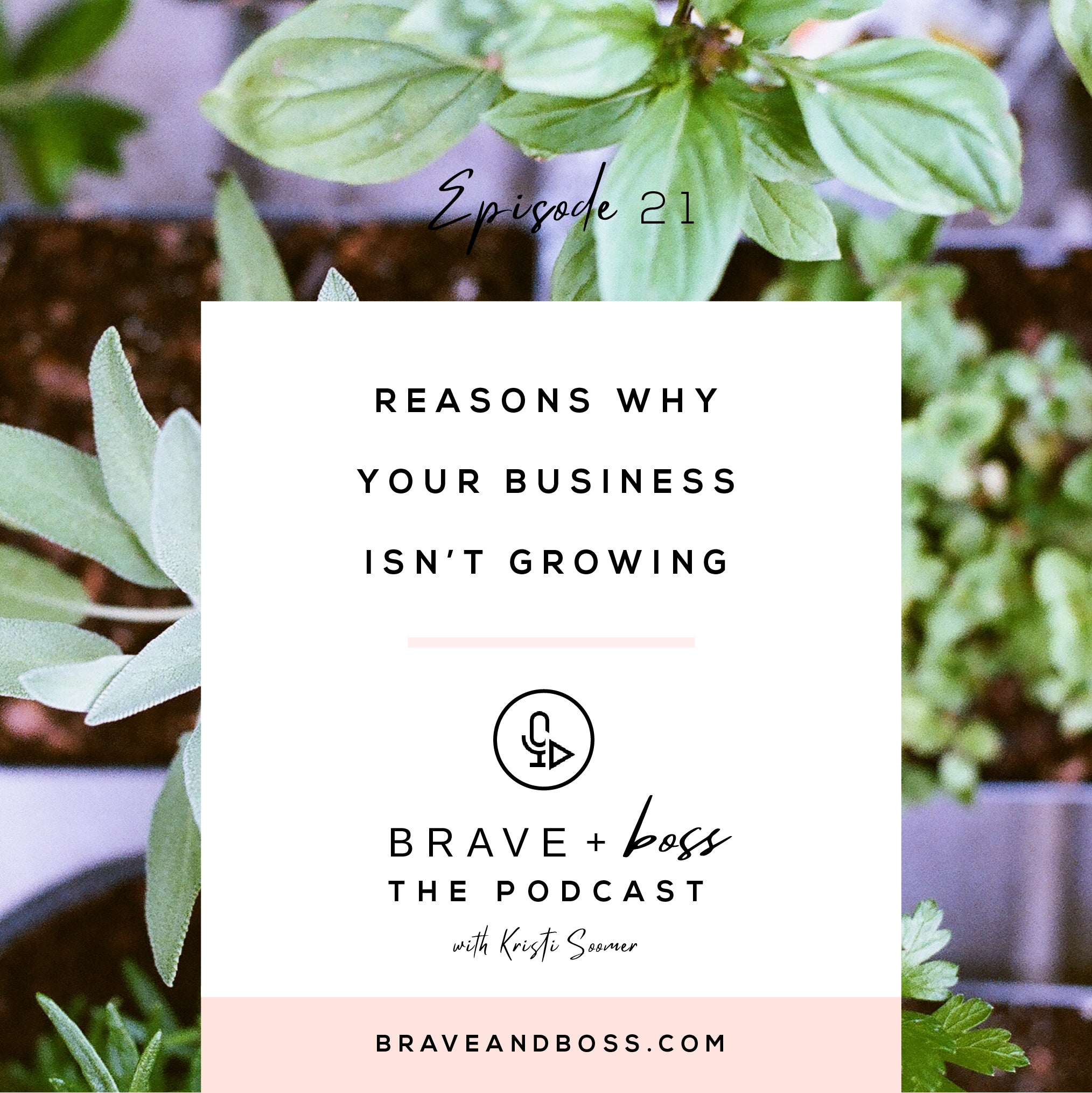 Reasons Why Your Business Isn't Growing