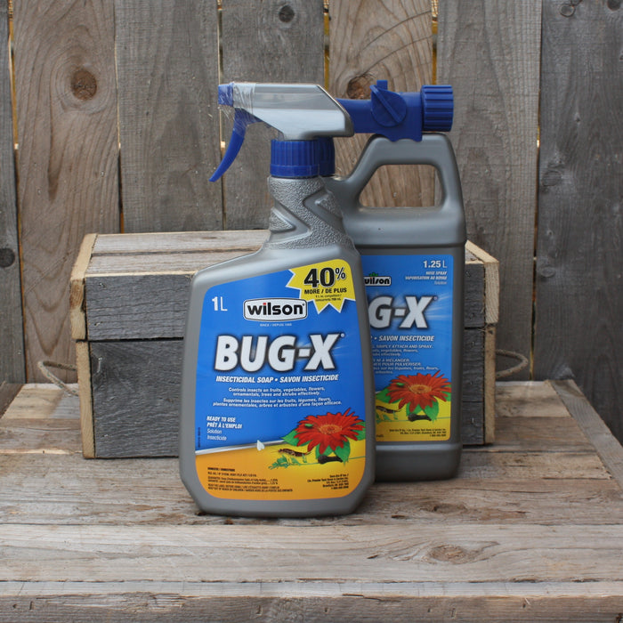 Savon insecticide - Bug-X