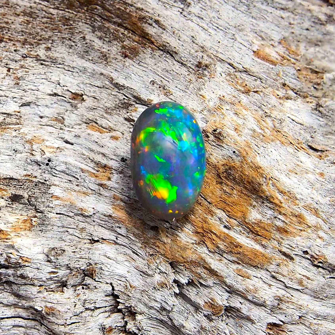 Colourful floral patterned oval Lightning Ridge solid semi-black opal with blue body tone and green and orange highlights, ideal for a ring or necklace pendant setting