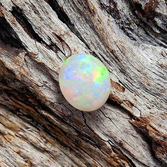 Pretty floral-patterned multi-colour round-oval Lightning Ridge solid crystal opal, ideal for a necklace pendant or ring setting