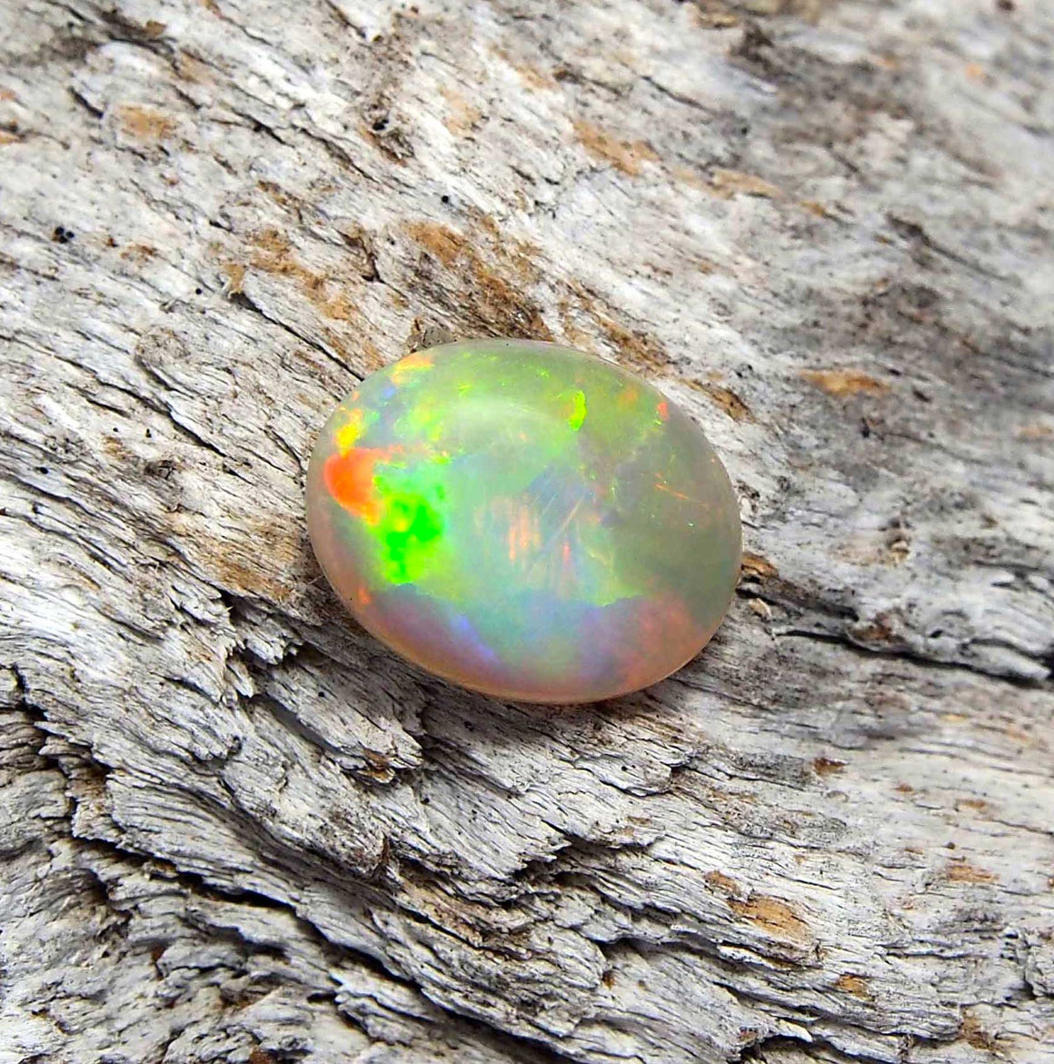 Beautiful Harlequin-patterned colourful oval Lightning Ridge solid crystal opal, ideal for a necklace pendant or ring setting