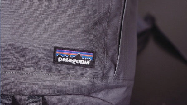 NEW Patagonia Arbor Day Pack 20L Backpack Review - Patagonia Logo Close Up | Benny's Boardroom