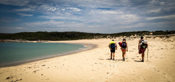 A Beginners Guide To Bushwalking in Sydney - Part One- Bennys Boardroom