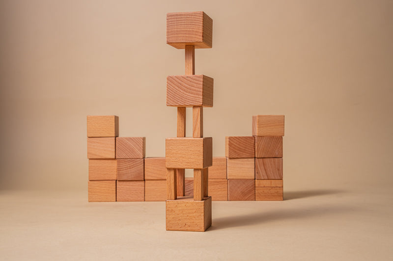 Explorer - 100 Wooden Building Blocks