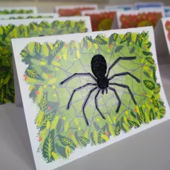 Tactopus Greeting Cards - Add your message!