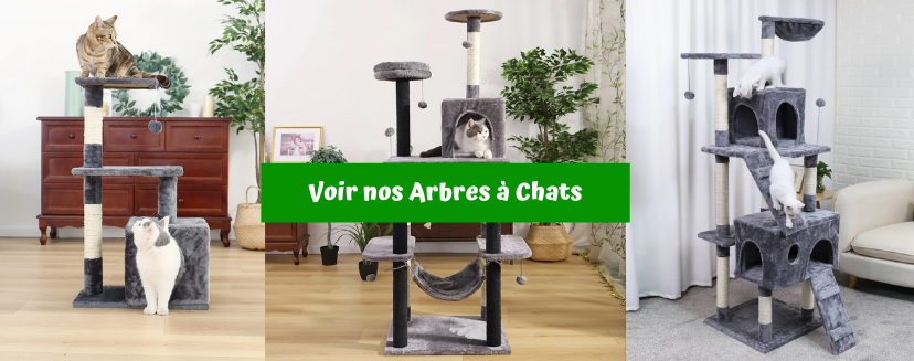 Arbre a Chats Collection
