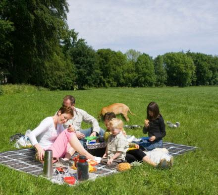 Carefree of Colorado Picnic Blanket