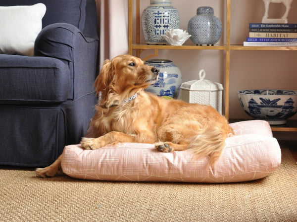 Janery_Jack_the_Model_Charlie_Cushion_Waterproof_Designer_Dog_Bed_Shell_Pink