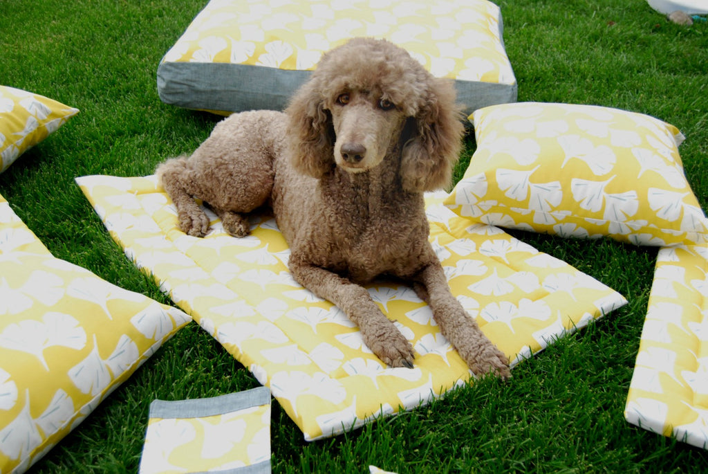 Janery Dog Bed Ginkgo Yellow As Seen Southern Living