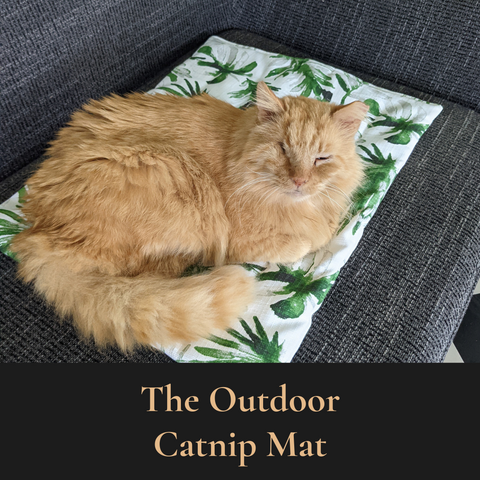 Janery Summer Collection Outdoor Cat Beds