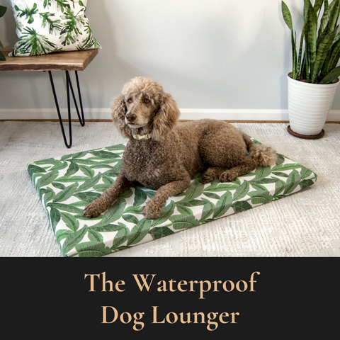 Janery Summer Collection Waterproof dog Loungers