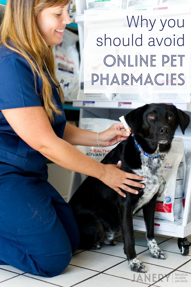 Why you should avoid online pet pharmacies