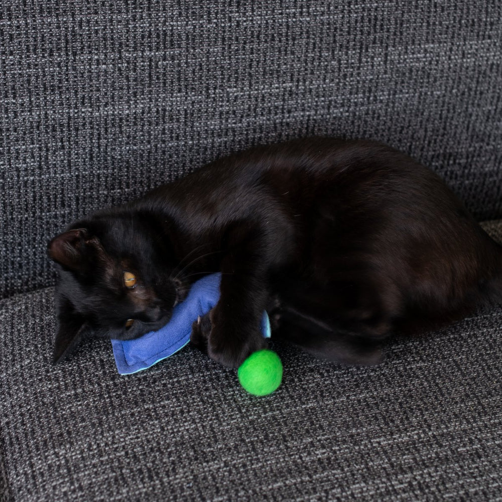 Jingle Balls | Cat Toys