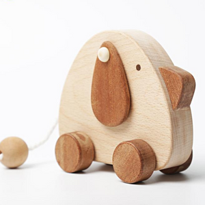Wooden Toys for babies