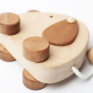 wooden organic toy