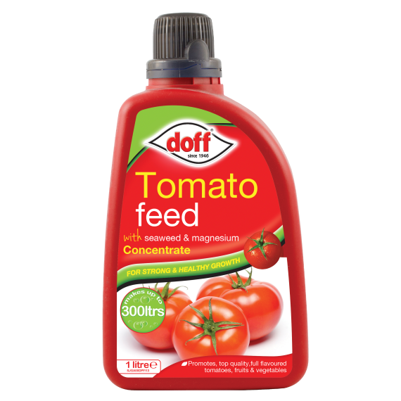 Doff Concentrated Tomato Feed 1L