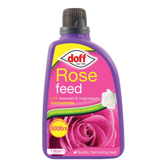 Doff Concentrated Rose Feed 1L