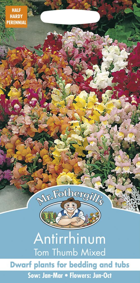 Mr Fothergills Antirrhinum Tom Thumb Mixed Seeds