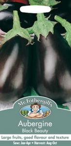 Mr Fothergills Aubergine Black Beauty Seeds