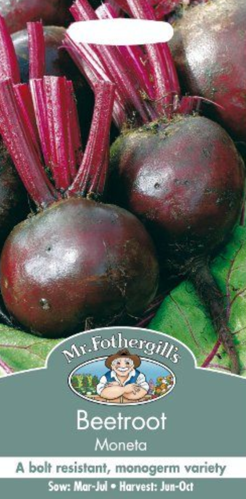 Mr Fothergills Beetroot Moneta Seeds
