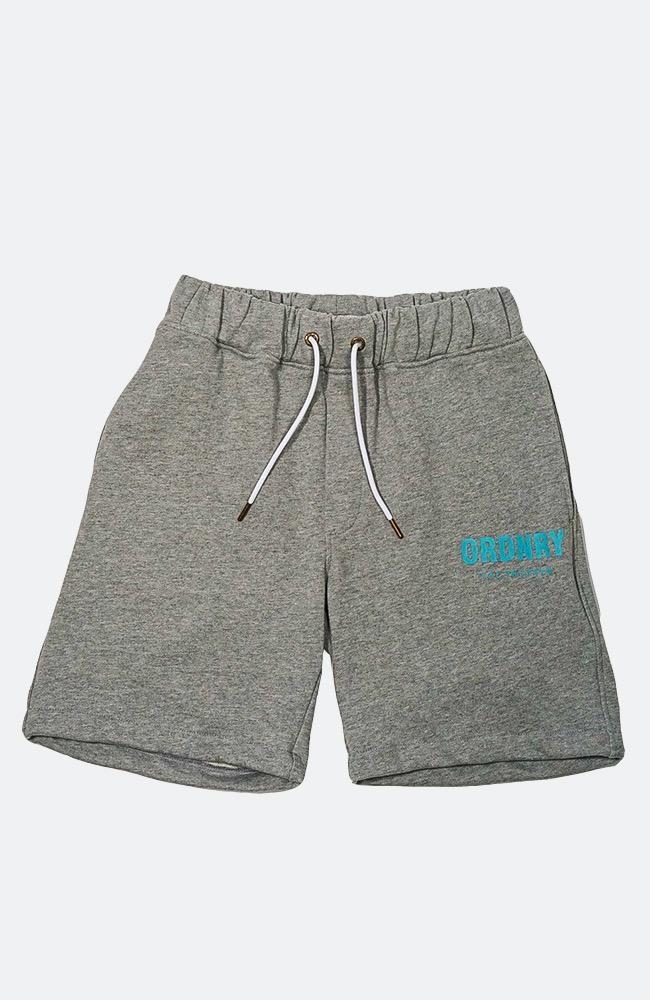 The Program Shorts - Grey - Shorts - Ordnry Clothing | Far From Ordinary | FFO | streetwear | Worldwide Shipping