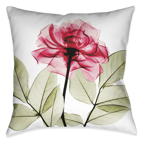 Rose X-Ray Indoor Decorative Pillow