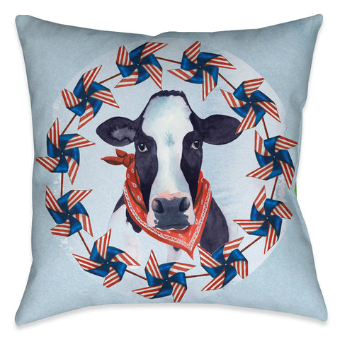 American Barn III Outdoor Decorative Pillow