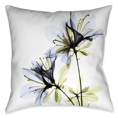 Azalea X-Ray Indoor Decorative Pillow