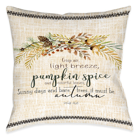 Crisp Air Indoor Decorative Pillow