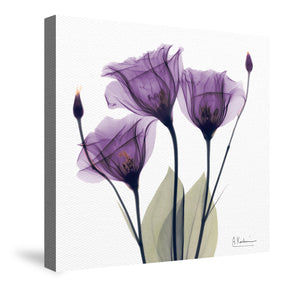 Gentian Hope Canvas Wall Art