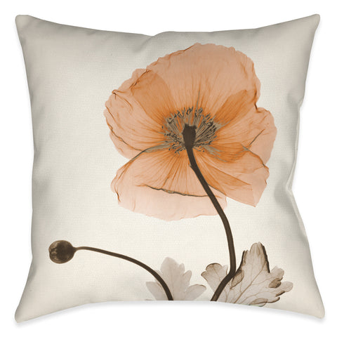 Poppy Harvest X-Ray Indoor Decorative Pillow