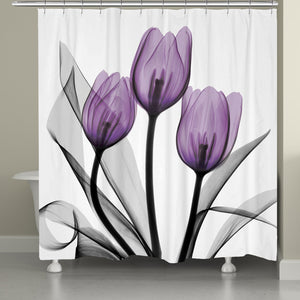 Purple X-ray tulip shower curtains