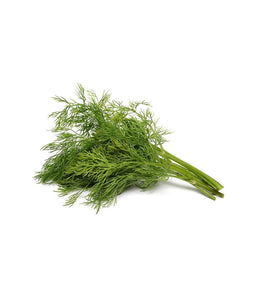Dill 1 bunch - Daily Fresh Grocery