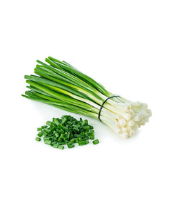 Fresh Scallion - Daily Fresh Grocery