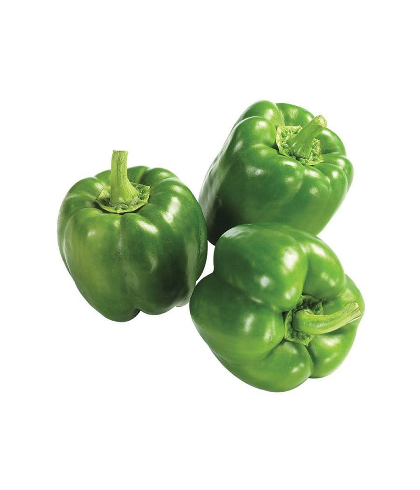 Green Bell Pepper 1 lb / 454 gram - Daily Fresh Grocery