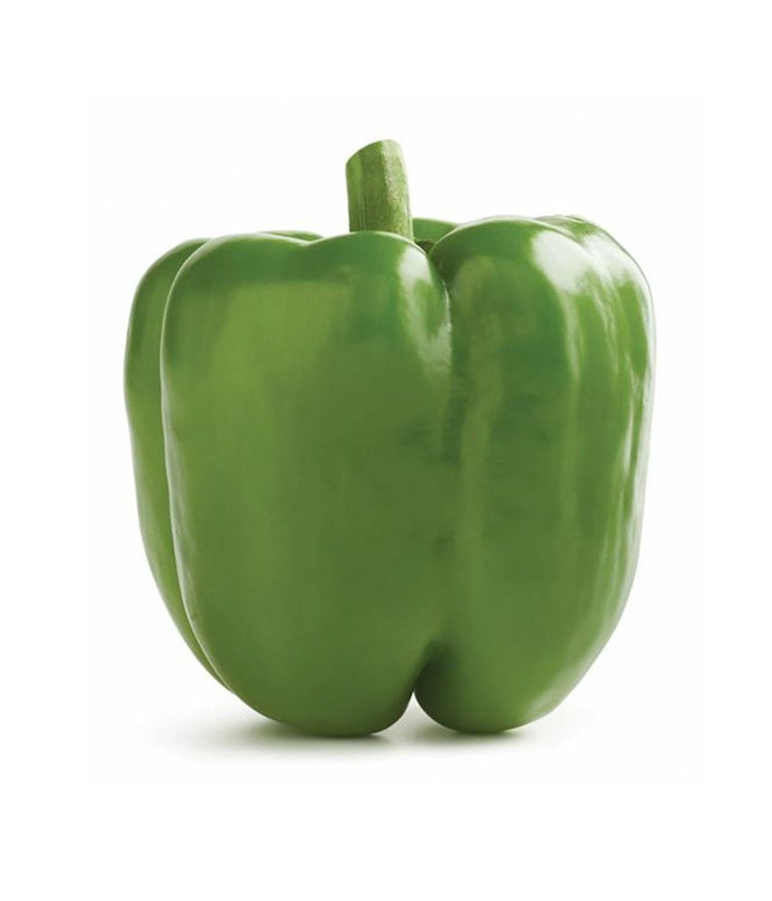 Green Bell Pepper (Each) - Daily Fresh Grocery