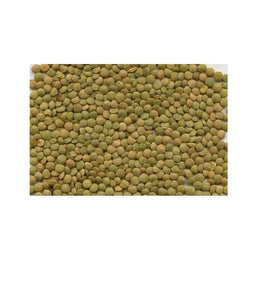 Green Lentils / 2lbs - Daily Fresh Grocery