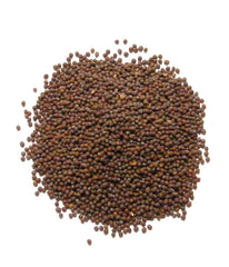 Mustard Seeds 7 oz - Daily Fresh Grocery