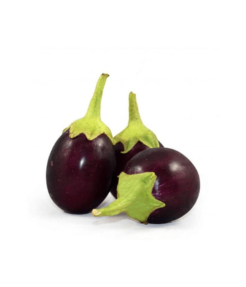 Round (Indian) Eggplant 1 lb / 454 gram - Daily Fresh Grocery