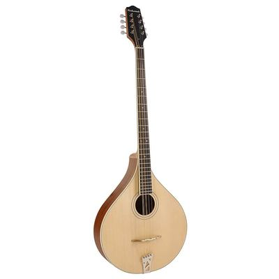 RIBZ-40 Richwood Master Series Irish bouzouki with solid spruce top