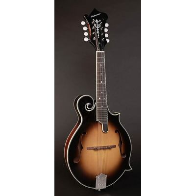 RMF-60-VS Richwood Master Series F-style mandolin with spruce top