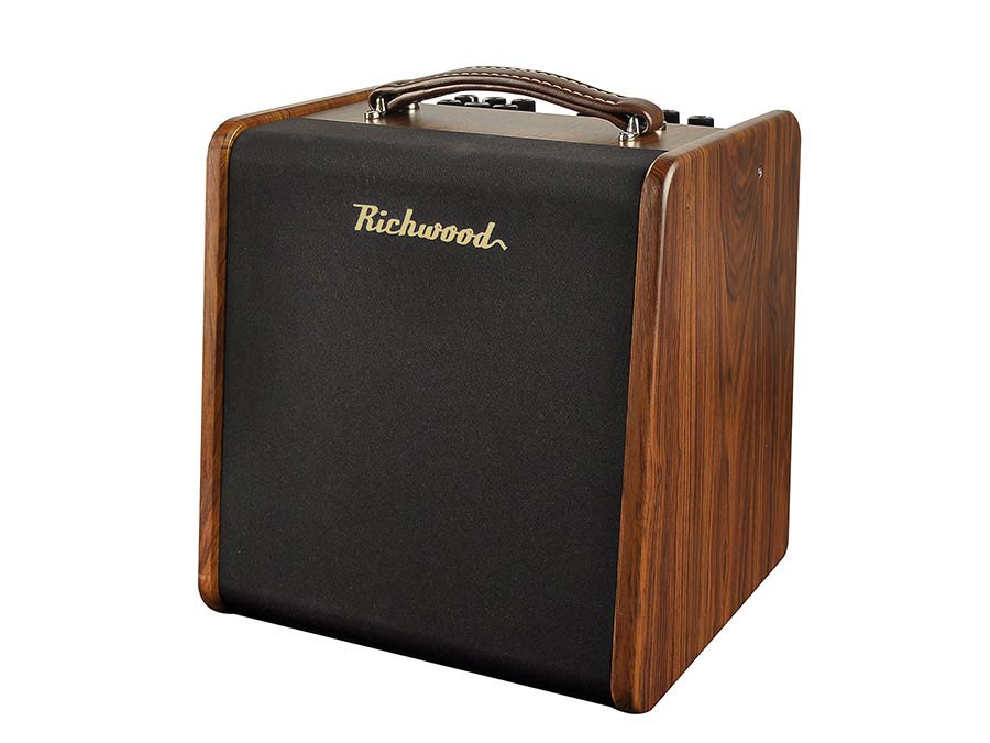 RAC-50 | Richwood acoustic guitar amplifier