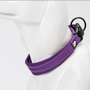Comfortable dog collar with modern design