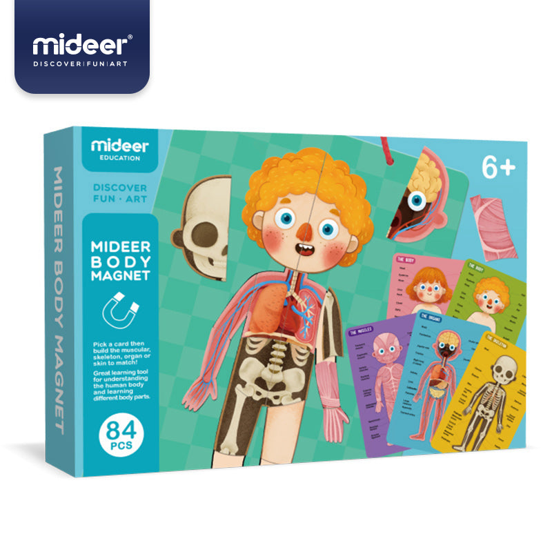 Baby Prime - Mideer Body Magnets (4816477126690)