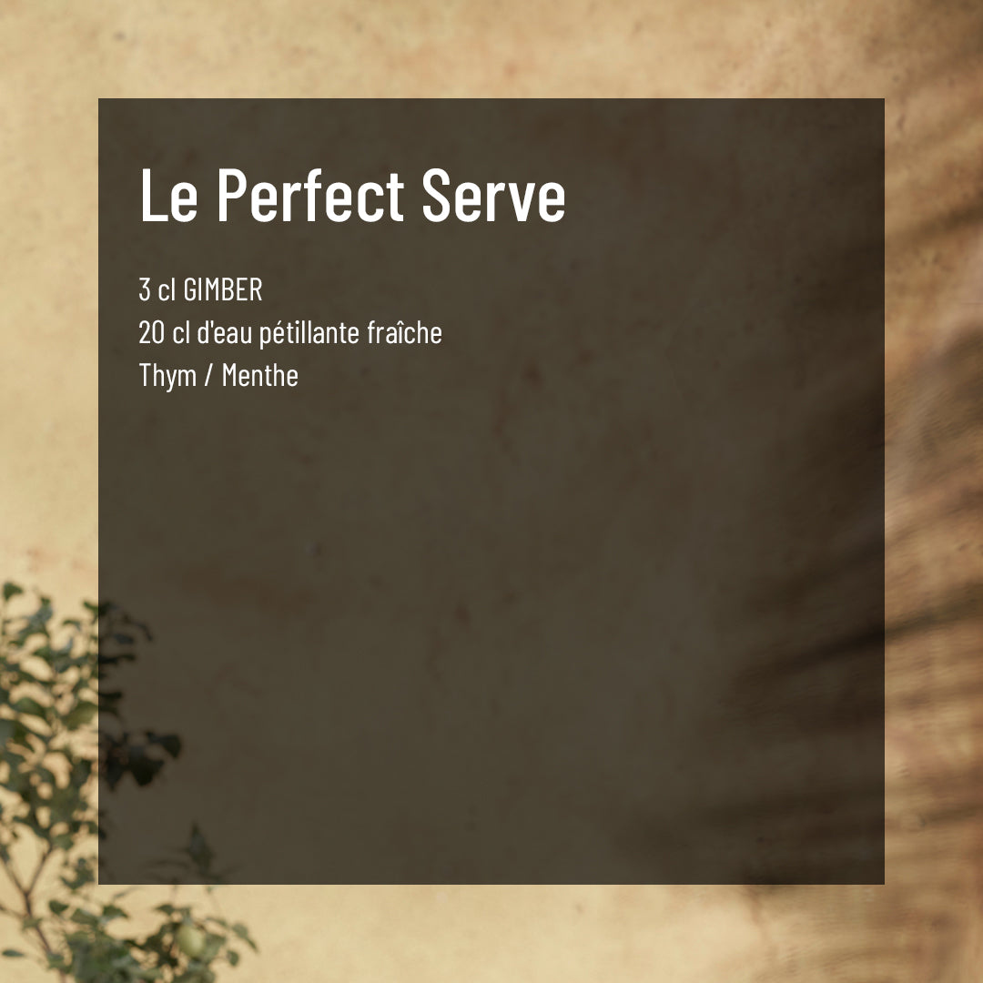 Recette Gimber the perfect serve