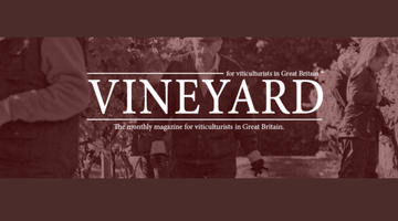 A rave review in Vineyard Magazine