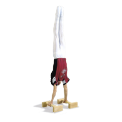 Handstand Training Aids (1403150)